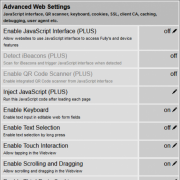 Advanced Web Settings